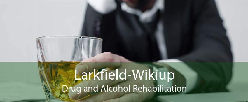 Larkfield-Wikiup Drug and Alcohol Rehabilitation
